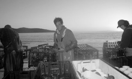 Lobster Fishers of Ballantyne's Cove – Tanya Lynn I